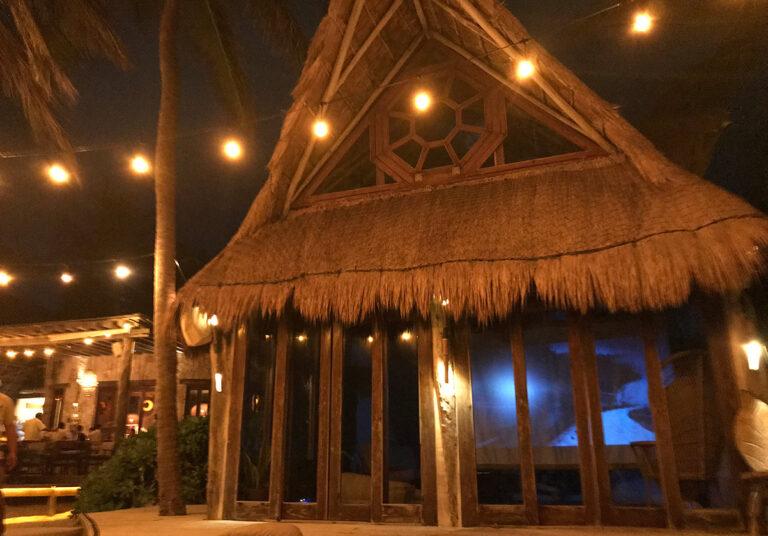 Delek Cine Tribe Movie Nights